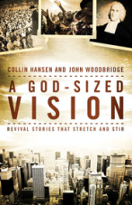 GodSized Vision book